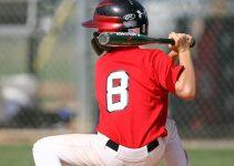 Best Baseball Bat For Little League